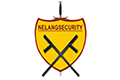 NELANG SECURITY SDN BHD